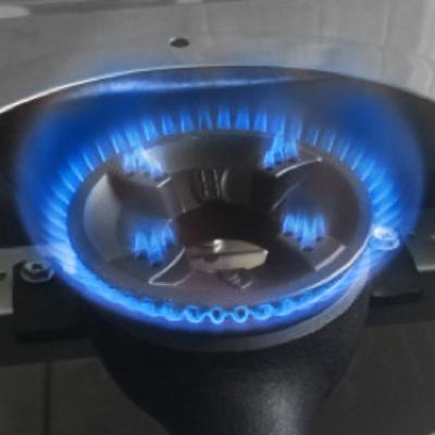 Đầu đốt ECO của Rinnai RV-A271